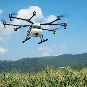 dronw over crop field